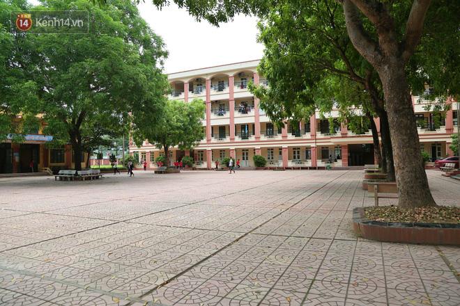 """Sau nỗi kinh hoàng """"cây đổ trong trường học"""": Các trường quản lý cây xanh ra sao? - ảnh 2"""