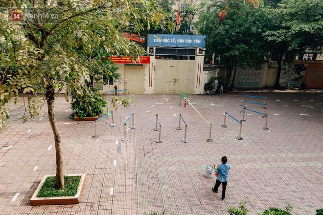 """Sau nỗi kinh hoàng """"cây đổ trong trường học"""": Các trường quản lý cây xanh ra sao? - ảnh 12"""