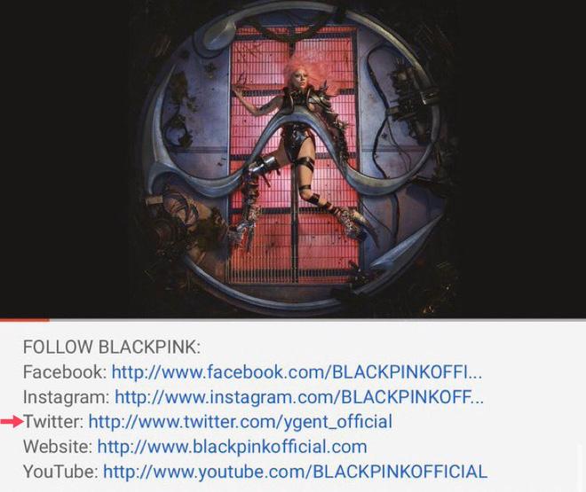 """YG im re trước ca khúc của Lady Gaga và BLACKPINK trong khi Đại sứ quán Mỹ chúc mừng, fan """"tố"""" phân biệt đối xử, chỉ """"cưng"""" boygroup tân binh? - ảnh 3"""