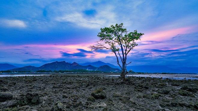 Bức ảnh Ông già và biển cả phiên bản Việt lọt top 1 ảnh về câu chuyện đại dương do National Geographic bình chọn và chia sẻ đầu tiên của chính tác giả - ảnh 7