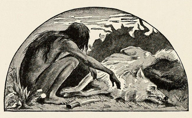 Nguyên mẫu đời thực của cậu bé rừng xanh: Không nói được tiếng người, sống như kẻ thiểu năng và chết trong bệnh tật sau 20 năm rời bầy sói - ảnh 3