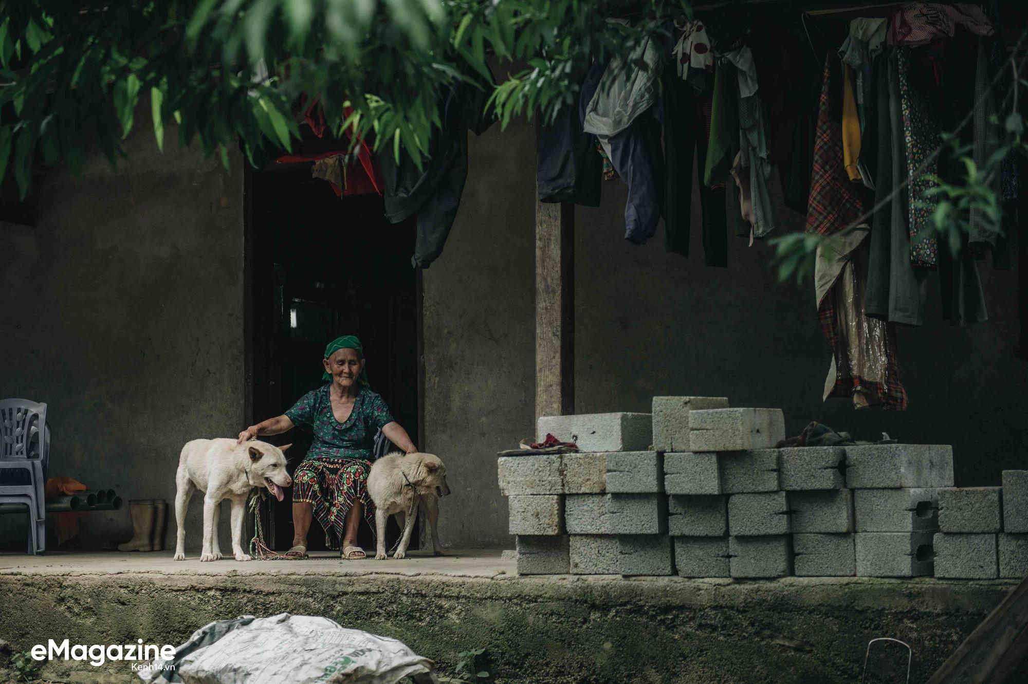 Cuộc đoàn tụ của cụ bà và con chó Cưng ở Hà Giang: Chó về rồi, bà không khóc nữa - Ảnh 4.