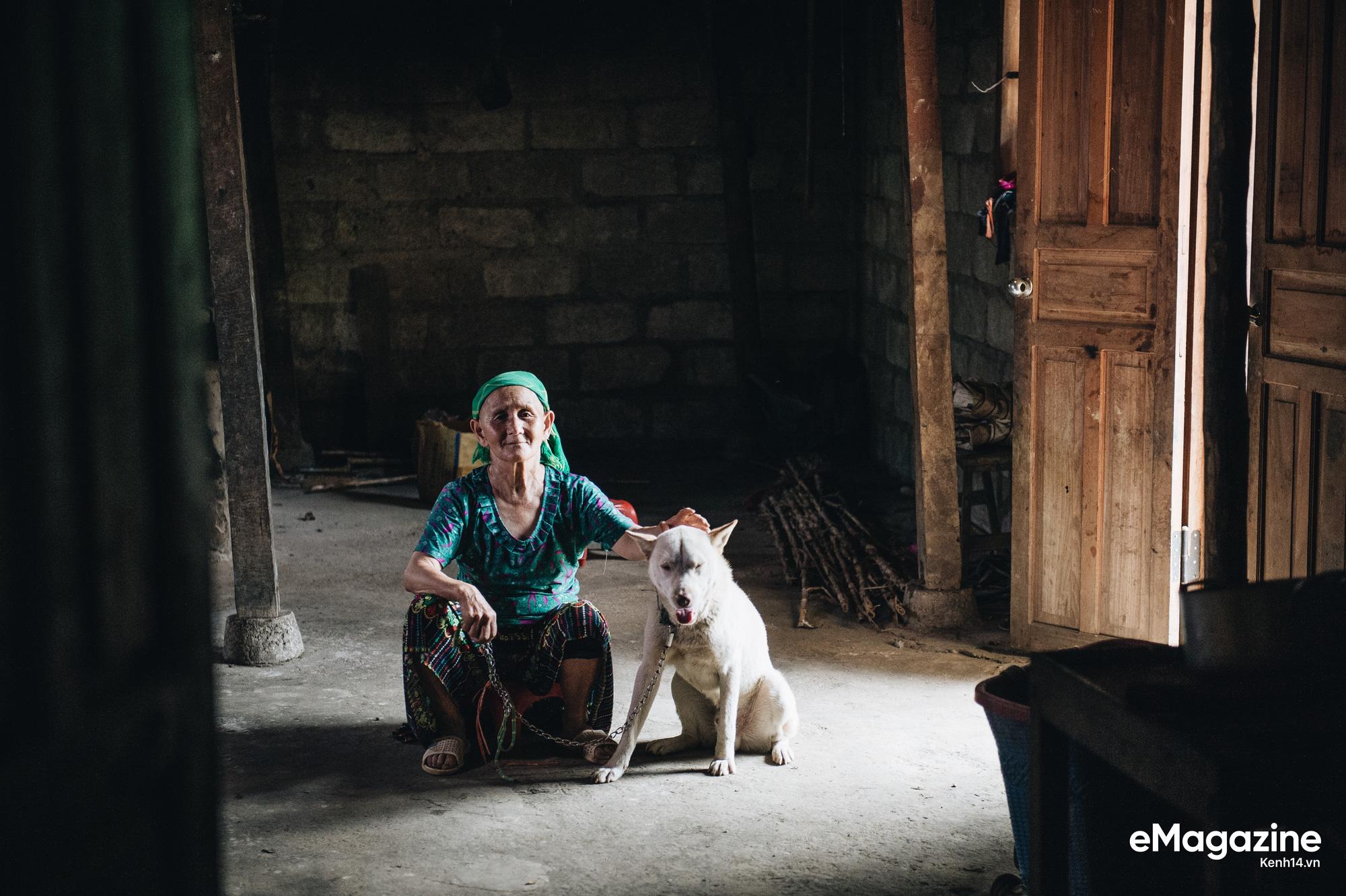 Cuộc đoàn tụ của cụ bà và con chó Cưng ở Hà Giang: Chó về rồi, bà không khóc nữa - Ảnh 2.