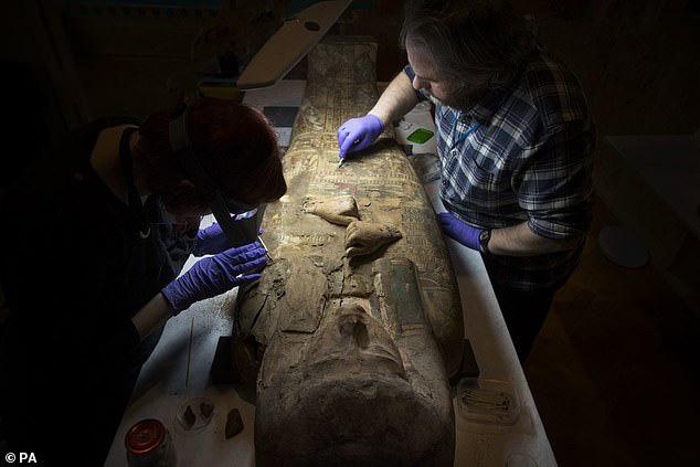 Đưa xác ướp 3.000 năm tuổi của công chúa Ai Cập ra khỏi quan tài, phát hiện bức chân dung bí ẩn cùng hàng loạt câu hỏi chưa có lời giải đáp - ảnh 1