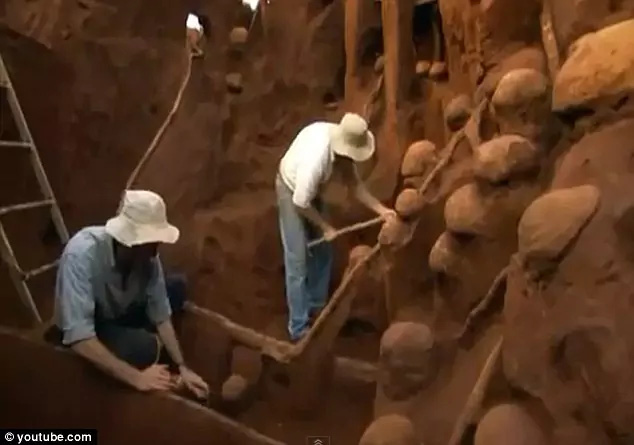 Đổ 10 tấn xi măng xuống tổ kiến dưới lòng đất, nhà khoa học không thể tin vào mắt mình khi khám phá ra thành phố khổng lồ - ảnh 3
