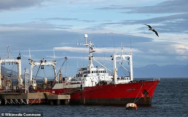 57 thủy thủ Argentina mắc Covid-19 bí ẩn sau 35 ngày trên biển - ảnh 1