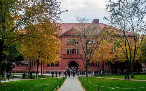 Du học sinh Việt Nam về nước được tiếp tục học tại các trường đại học trong nước - Ảnh 1.