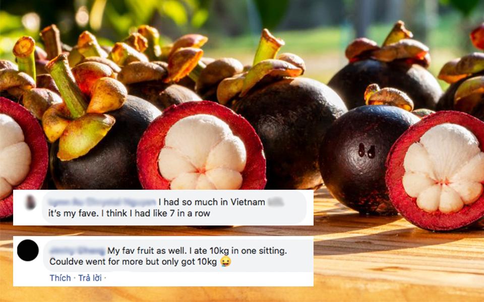 Hoá ra măng cụt Việt Nam rất được săn lùng ở nước ngoài, có người tự nhận ăn một lúc... 10kg