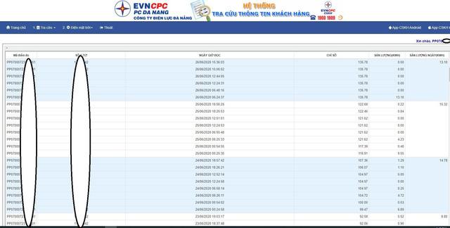 Điện lực Đà Nẵng phát triển hệ thống tra cứu chỉ số điện theo ngày, khách hàng có thể tự theo dõi, kiểm tra tiền điện của mình - ảnh 2