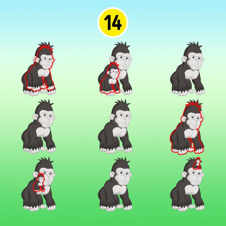 15 hình ảnh giúp luyện mắt và trí não thêm nhạy bén, sắc sảo - ảnh 30