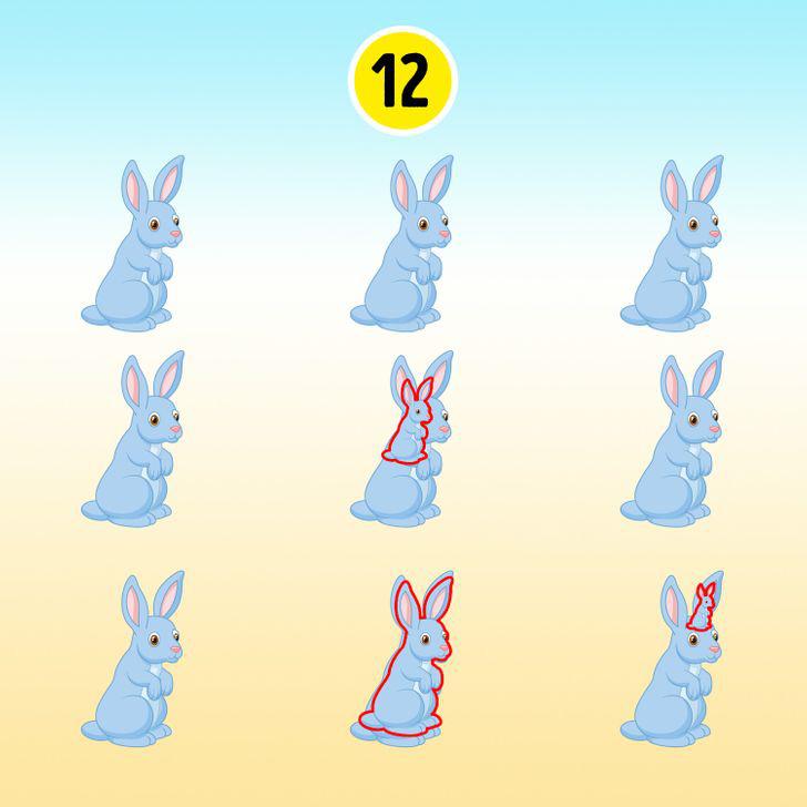 15 hình ảnh giúp luyện mắt và trí não thêm nhạy bén, sắc sảo - ảnh 6