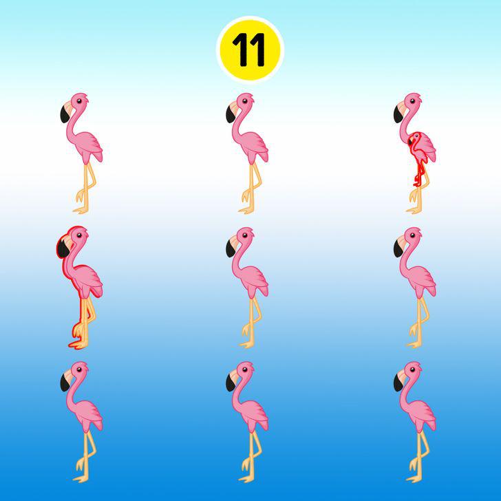 15 hình ảnh giúp luyện mắt và trí não thêm nhạy bén, sắc sảo - ảnh 10