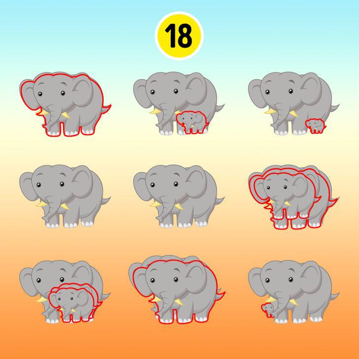15 hình ảnh giúp luyện mắt và trí não thêm nhạy bén, sắc sảo - ảnh 14