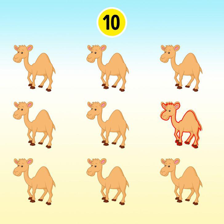 15 hình ảnh giúp luyện mắt và trí não thêm nhạy bén, sắc sảo - ảnh 16