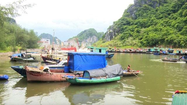 Bão số 2: Hải Phòng, Quảng Ninh sơ tán dân, cấm biển từ 0h ngày 2/8 - ảnh 4