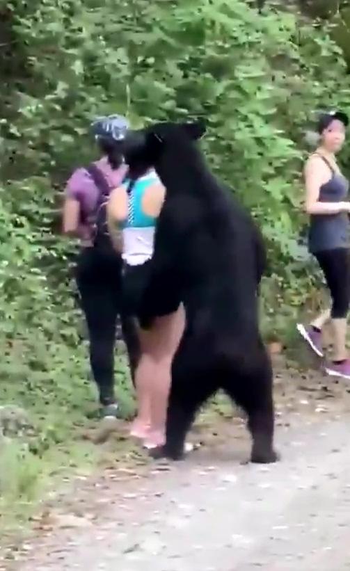 Gấu đen bị thiến sau khi vô tư đụng chạm nữ du khách trẻ - Ảnh 4.
