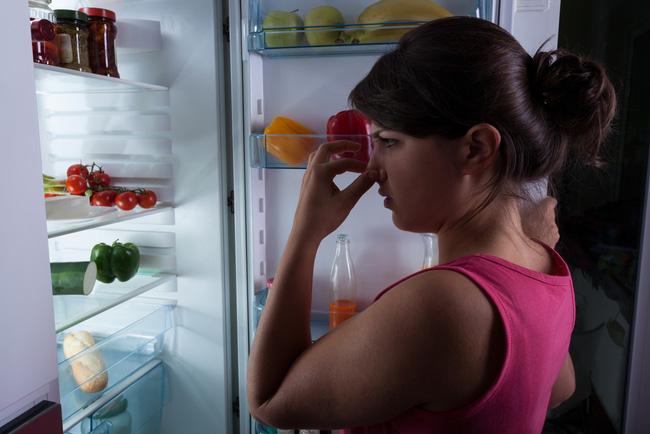 Tủ lạnh là nơi bảo quản thức ăn tốt nhất nhưng thực phẩm có thể bảo quản được bao lâu trong tủ lạnh khi mất điện? - ảnh 2
