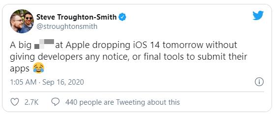 Ra mắt iOS 14 sớm hơn thường lệ, Apple vừa vả một cái tát đau điếng vào các nhà phát triển - ảnh 2