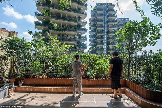 Trung Quốc tham vọng xây thiên đường sinh thái nhưng lại hóa thành phố ma vì… muỗi - ảnh 3