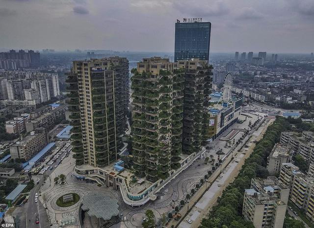 Trung Quốc tham vọng xây thiên đường sinh thái nhưng lại hóa thành phố ma vì… muỗi - ảnh 9