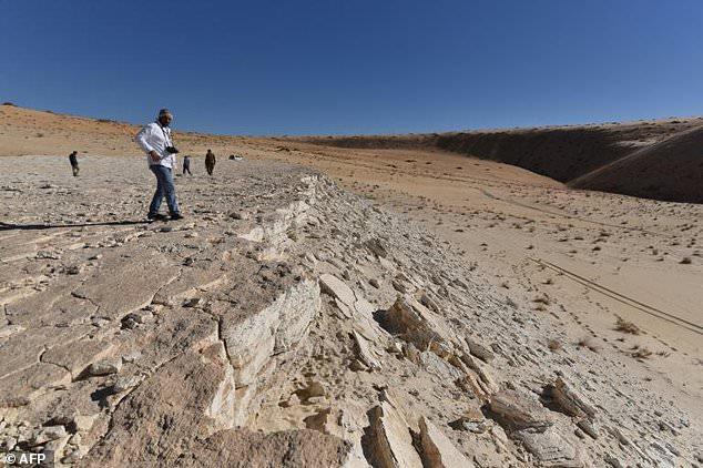 Hồ nước cạn khô trên sa mạc hé lộ một loạt dấu chân 120.000 năm tuổi của tổ tiên chúng ta - ảnh 3