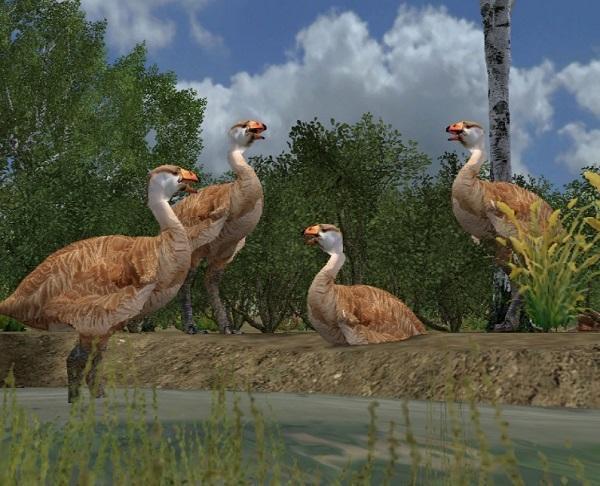 Những loài động vật tuyệt chủng vì sự thiếu hiểu biết của loài người - ảnh 9