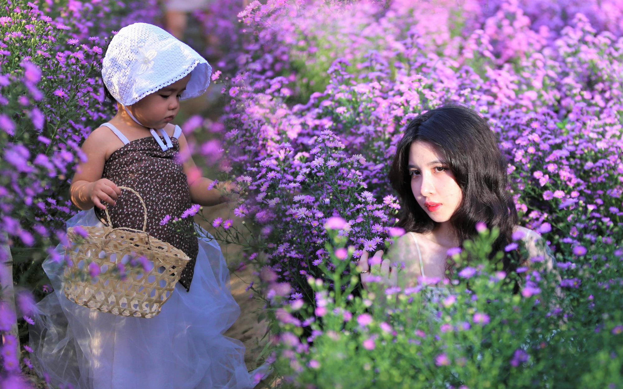 Dân tình chen chúc ''sống ảo'' tại vườn hoa thạch thảo đẹp lịm tim lần đầu được trồng ở Đà Nẵng