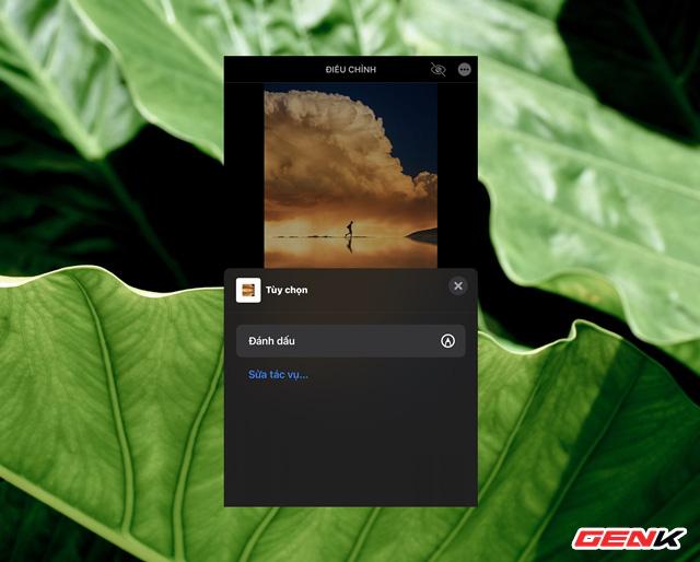 Cách sử dụng kính lúp trong chỉnh sửa ảnh để nhấn mạnh nội dung trên iPhone - ảnh 4