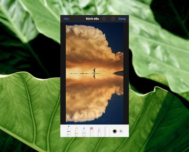 Cách sử dụng kính lúp trong chỉnh sửa ảnh để nhấn mạnh nội dung trên iPhone - ảnh 5