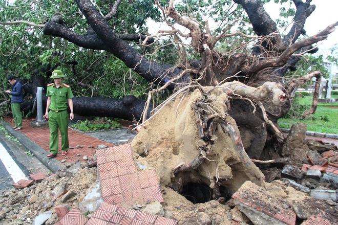 Bão Vamco đổ bộ vào đất liền: Các tỉnh miền Trung gió giật kinh hoàng, đảo Cồn Cỏ bị cắt đứt hoàn toàn liên lạc - Ảnh 1.