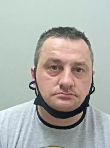 Lạm dụng tình dục đàn gà nhà hàng xóm, người đàn ông nhận án 30 tháng tù giam - Ảnh 1.