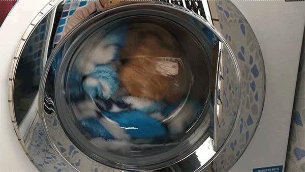 5 hành động dại dột khi sử dụng máy giặt khiến quần áo mãi không sạch, thậm chí còn chứa đầy vi khuẩn gây bệnh - Ảnh 2.