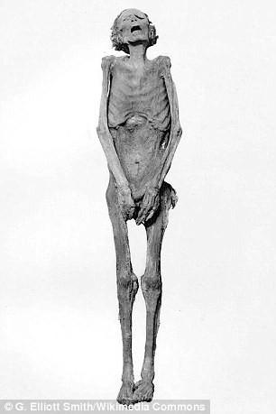 Tìm thấy xác ướp la hét kỳ lạ, các nhà khoa học phát hiện âm mưu đáng sợ trong gia đình Hoàng gia nổi tiếng nhất thế giới từ 3.000 năm trước - ảnh 2