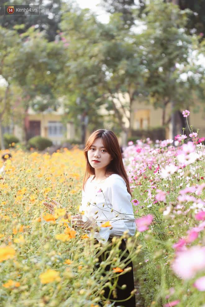 Trường ĐH rộng gần 200 ha có vườn hoa đẹp nhất mùa đông Hà Nội, nhiều góc sống ảo cực chill chỉ với 25K - ảnh 7