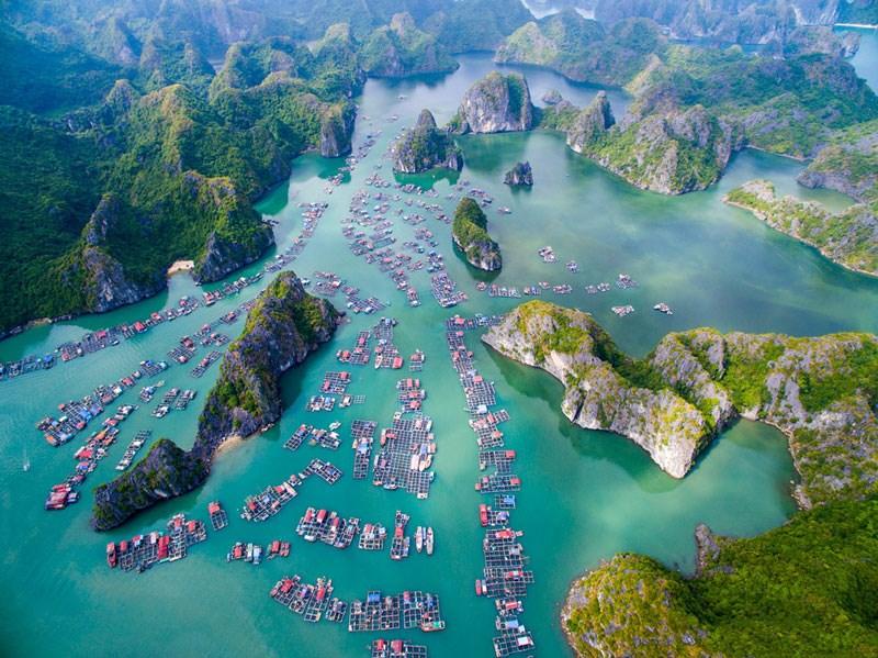Không phải Đà Lạt, Sa Pa hay Đà Nẵng, địa điểm du lịch Việt Nam được nhiều người tìm kiếm nhất trong năm 2020 sẽ khiến bạn bất ngờ - Ảnh 4.