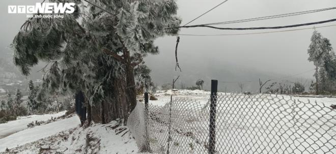 Ngay lúc này: Lào Cai tuyết phủ trắng xóa, Y Tý đẹp như châu Âu - Ảnh 2.