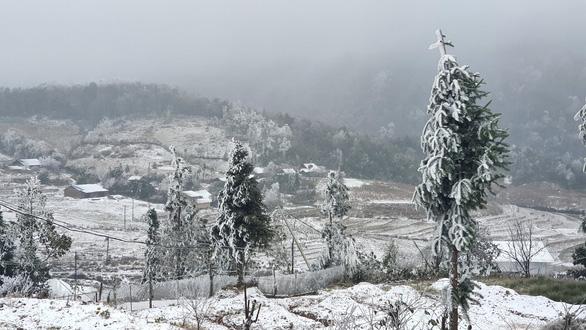 Livestream: Nhiệt độ xuống -5 độ C, tuyết phủ trắng Y Tý (Bát Xát) - Ảnh 2.