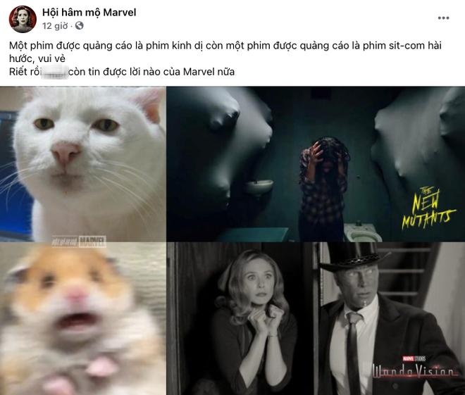 Netizen Việt bùng nổ vì WandaVision quá đỉnh: Vừa hài, vừa cuốn nhưng có một chi tiết xem mà hãi hùng! - ảnh 2