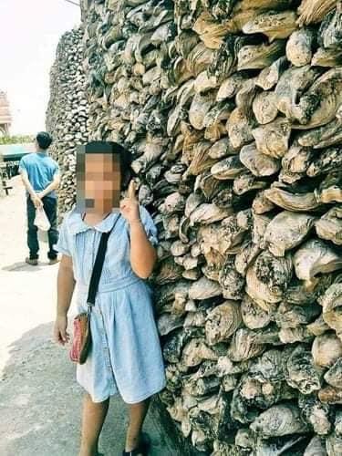 Vụ bé gái 11 tuổi tử vong khi mang thai ngoài tử cung: Ông nội phủ nhận cáo buộc cưỡng hiếp cháu, chị nạn nhân tiết lộ chuyện động trời - ảnh 1