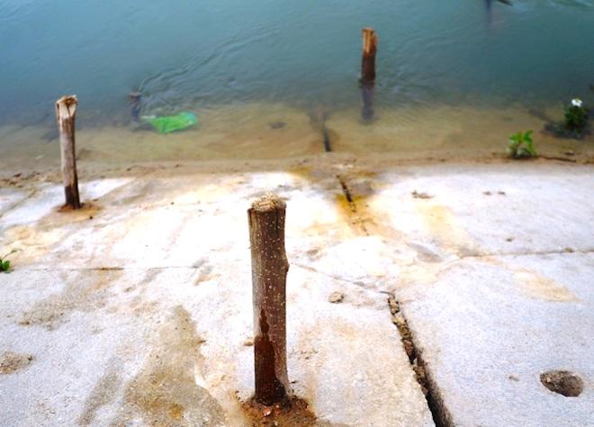 Vụ bé 9 tuổi rơi xuống sông, tử vong vì không có chỗ bám: Giải pháp nào cứu dòng sông tử thần? - ảnh 8