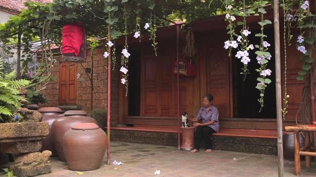 Xuất hiện trên truyền hình Nhật Bản, những hoàng thượng Việt Nam gây sốt bạn bè bốn phương - ảnh 3