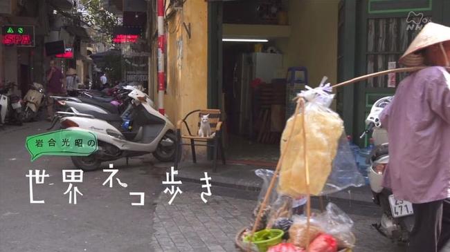 Xuất hiện trên truyền hình Nhật Bản, những hoàng thượng Việt Nam gây sốt bạn bè bốn phương - ảnh 5