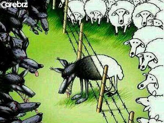 Chim ưng sống trong chuồng gà sẽ mất đi bản lĩnh bay cao, sói sống lẫn với cừu sẽ mất đi bản năng bá chủ: Bạn là ai không quan trọng bằng việc bạn ở cùng ai! - Ảnh 2.