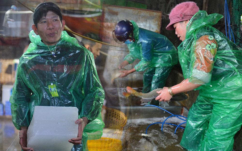 Những bàn tay trần khiêng đá lạnh, bắt cá tươi trong cái giá rét dưới 10 độ: