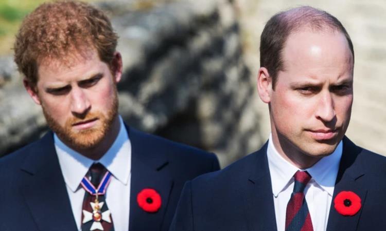 Không phải đỏ hay vàng, đây mới là màu thể hiện được sự quyền lực và giàu có mà người trong hoàng gia ưa chuộng - Ảnh 5.