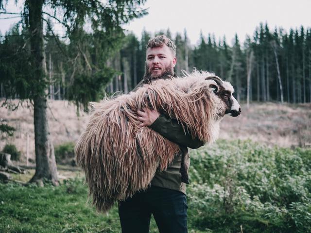 Đút túi ngon ơ gần 4 tỷ/năm với công việc đơn giản từ sáng đến chiều chỉ đi trực thăng và ôm cừu - ảnh 3