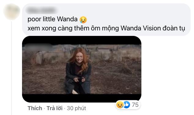 Netizen Việt bùng nổ vì WandaVision tập 8: Cảm động muốn khóc, tình tiết chấn động không thể ngờ! - ảnh 11