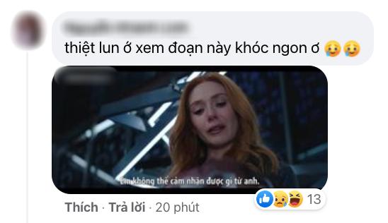Netizen Việt bùng nổ vì WandaVision tập 8: Cảm động muốn khóc, tình tiết chấn động không thể ngờ! - ảnh 7
