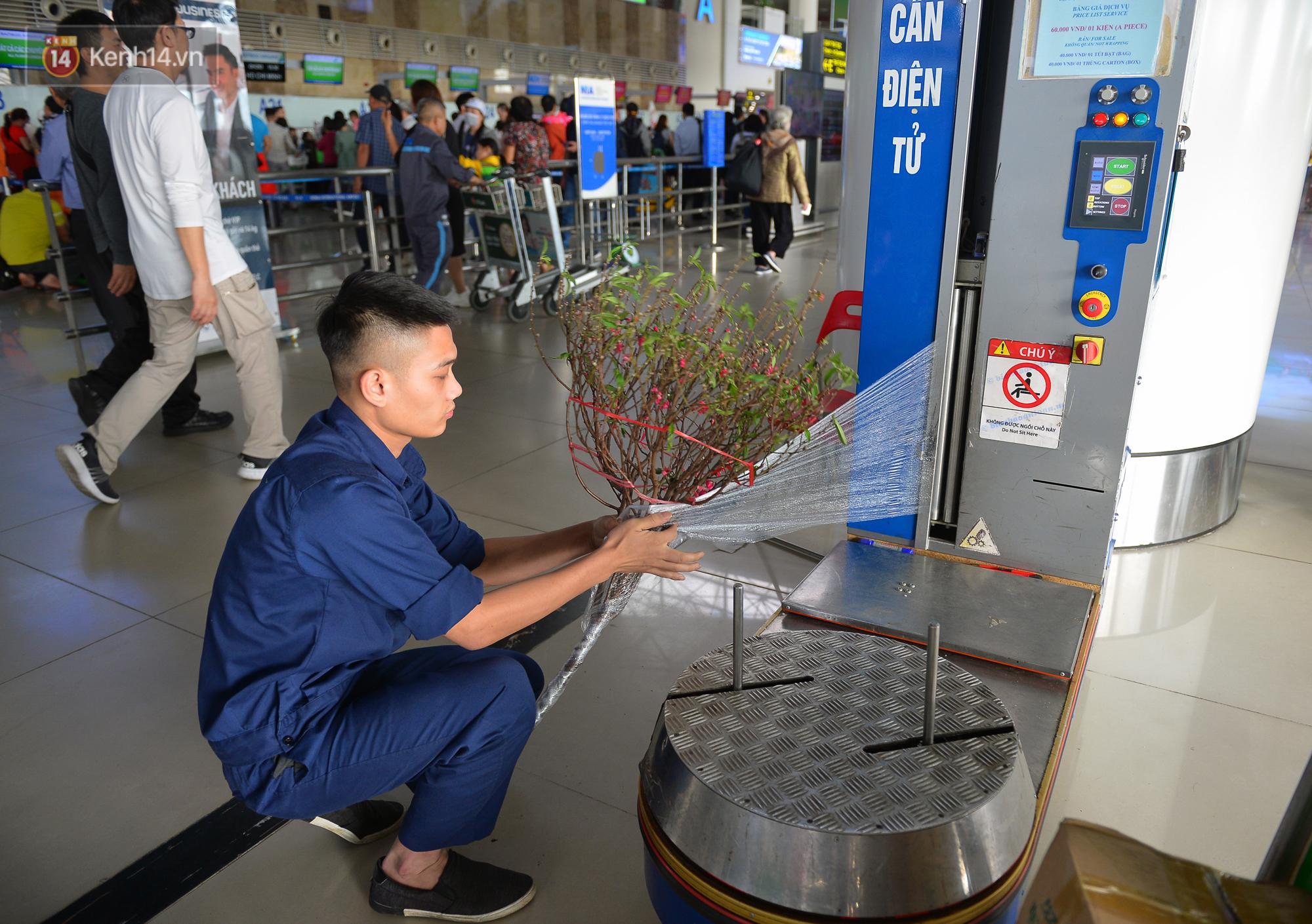 Ảnh: Sân bay Nội Bài vắng vẻ cận Tết Nguyên Đán, khác hẳn cảnh tượng đông đúc mọi năm - Ảnh 4.