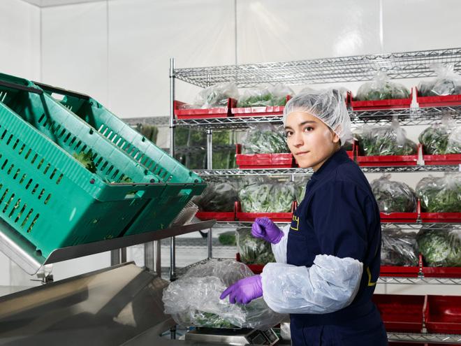 Sẽ thế nào khi rau được trồng trong nhà máy, bằng robot, AI và thế hệ nông dân 4.0? - ảnh 11